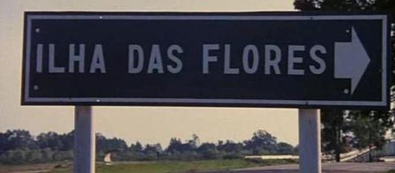 <b><i>Ilha das Flores </i></b><i>(Island of Flowers)</i>